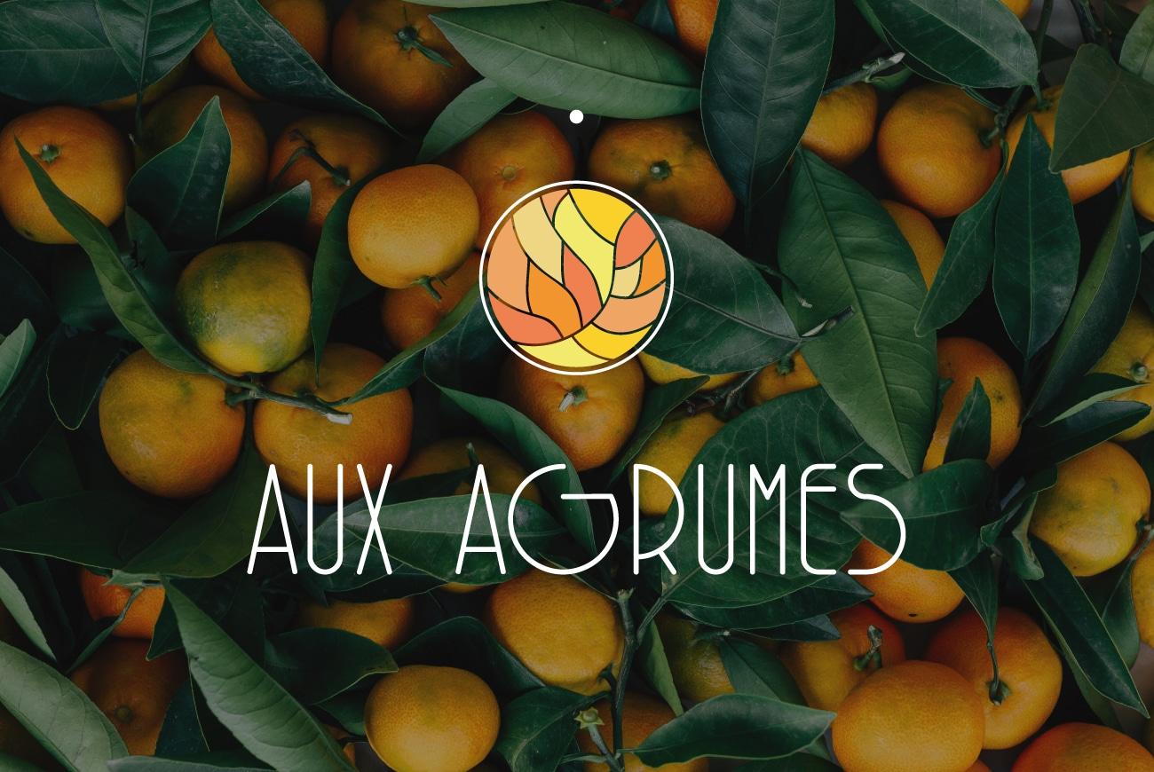 freelance-bordeaux-lyongraphiste-aux-agrumes